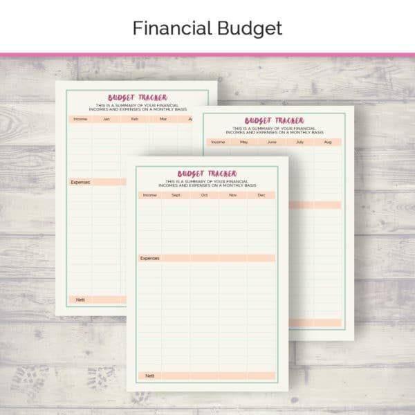 budget_tracker